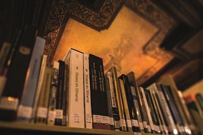 Detalhe do teto da Biblioteca do MHN